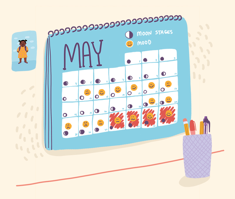 Calendar showing the various stages of the menstrual cycle